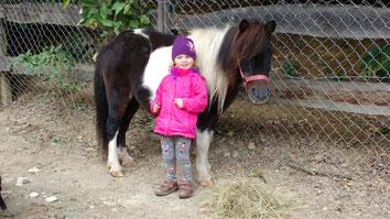 Pony Greti, Mayr-Eichberg