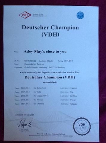 Cloe's VDHChampion
