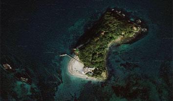 空から観た猿島(衛星写真)