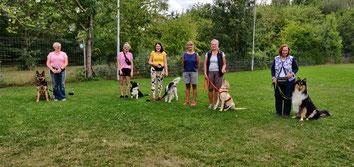 Unsere Junghundgruppe (24.07.2020)