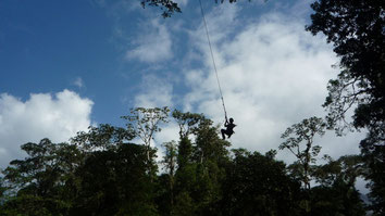 Tarzan swing - Athica Canopy Tour