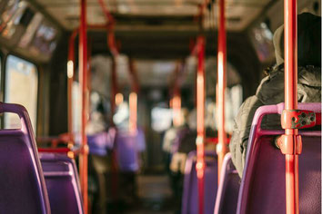 Der Bürgerausschuss RSKN setzt sich für einen Fortbestand der Busverbindung nach Uhlbach aus. (Bildquelle: BA RSKN)
