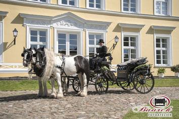 Hochzeitskutsche in Mecklenburg Vorpommern