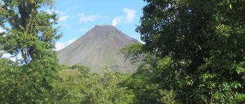 Operada por Jungle Tours: Catarata La Fortuna, Volcan Arenal, observatorio Lodge, Aguas Termales