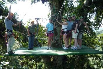 Canopy and Tarzan Swing