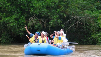 Arenal Tours and Activities