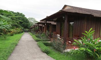 Hotel con Vista al Volcán Arenal y Aguas Termales