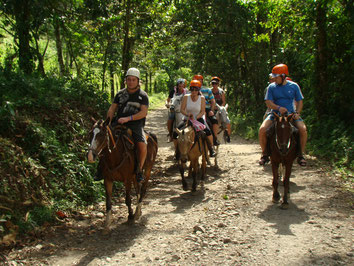 La Fortuna Waterfall & Horseback Ride