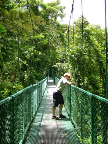 Puentes Colgantes Selvatura Parque