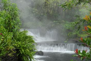 Paseo de un día a Arenal Aguas termales
