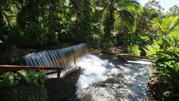 Arenal Combo Tour: Arenal Hanging Bridges Hike & Hot Springs