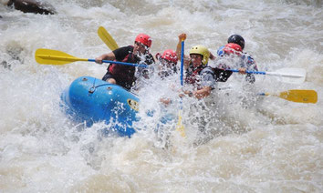 Rápidos Río Sarapiqui