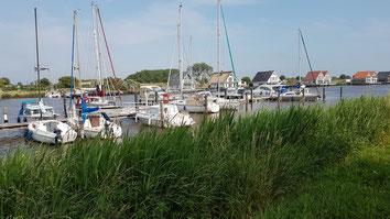 Harlesiel Yachthafen - Harle