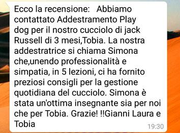 Tobia (jack russel 3 mesi)