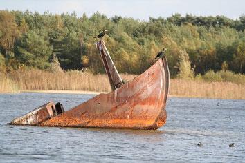 Gezonken boot met aalschovers in de Sahara in Lommel
