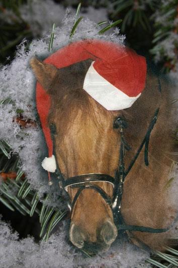 ...frohe Weihnachten