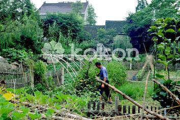 Man Gartenarbeit Chinesischen Landschaft Natur