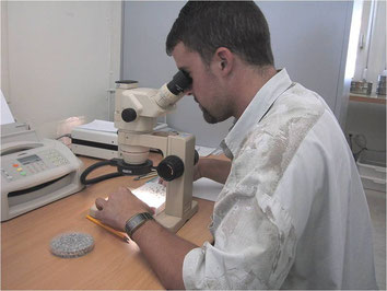 Microscopic analysis