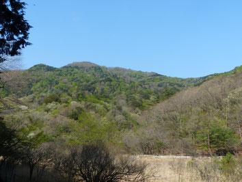 湿原から守護岩方面を望む