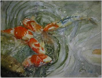 ©BLAN, Koi´s . Watercolor , 2016 , size 38 x 56 cm