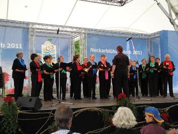 Frauenchor Neckarblühen Horb 2011
