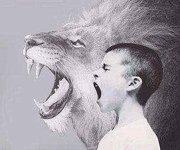 aggressives Verhalten, AD(H)S, Impulskontrollstörung