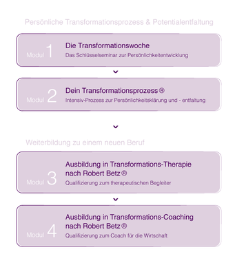 Transformationstherapie Robert Betz