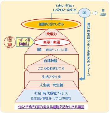 細胞を活かしきるキーコンセプト No.1 Cafe すてきに活ききる 旬(ときめき)亭       http://sutekini-ikiru-cafe.jimdo.com/