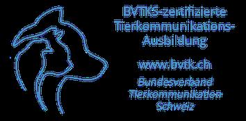 BVTKS-Label für Lehrgänge