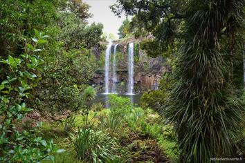 - Whangarei Falls - Nouvelle-Zélande -
