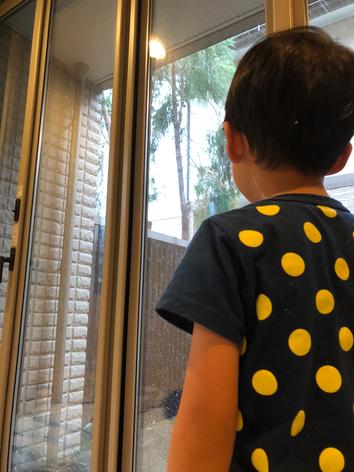 強風で木が揺れるのを何度も窓から確認してる息子。