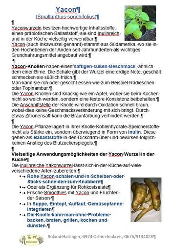 Info über Yacon S.1