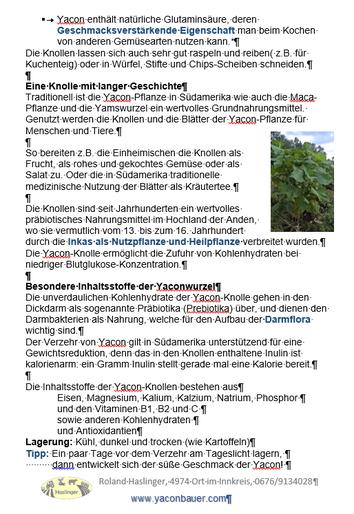 Info über Yacon S.2