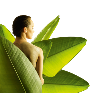 Frau mit Palmenblättern Detox