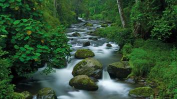 Itinerario de visita a Costa Rica Todo incluido