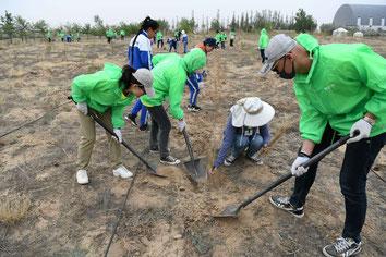 学校の友だちやボランティアの方々と一緒に頑張って植林しました!