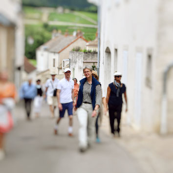 Stadtführungen Weinbergsführungen deutsche Reiseleitung Burgund