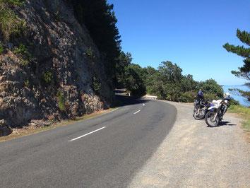Coromandel Peninsula - Colville Road