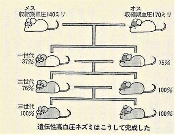 一匹のネズミが従来の誤った学説を放逐した。