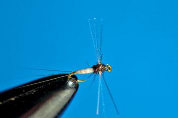 Caenis flash In questa piccolissima caenis le ali sono realizzate utilizzando tre fibre di Flashabou. Il risultato è estremamente adescante, per i pesci, ma si perde molto in termini di visibilità