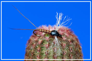 rhithrogena; pesca a mosca; fly tying; flyfishing