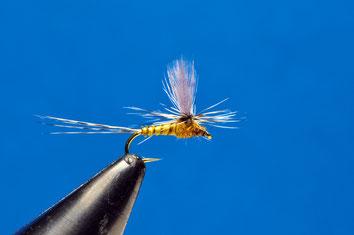 Parachute estremamente catturante durante le schiuse di piccole Olive. Le ali in gallina sono più complesse da montare del solito poly, e molto più fragili. Possono però fare la differenza in presenza di pesce molto diffidente