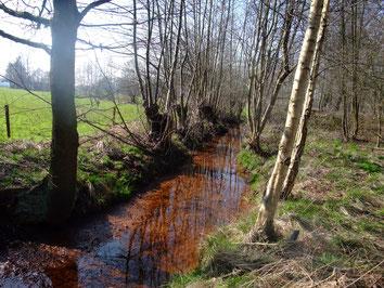 Vernieuwing van drinkwatergewinning in Oud-Turnhout