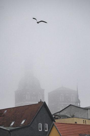 sankt st nikolai hafen hansestadt stralsund nebel herbst november mecklenburg vopommern heimatlicht fotografie geschichte heimat ostsee urlaub ausflug moody