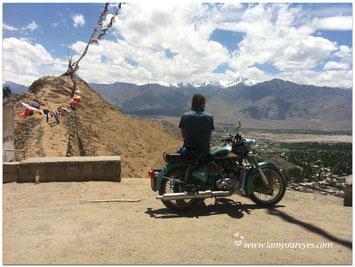 Ontmoeting Met De Dalai Lama India Mos Magic Landscapes