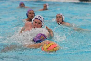 Foto: Witte, 42. int. Wasserballturnier