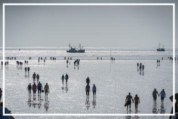 Die Nordsee und das Wattenmeer