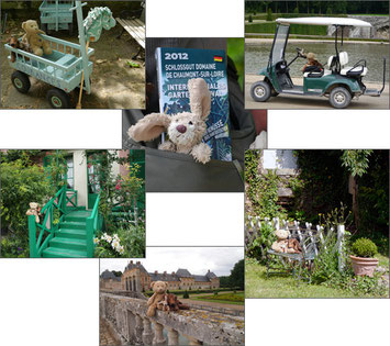 Kasimirs, Cäsars und Fredis Pfotenrunde in Gärten Frankreichs