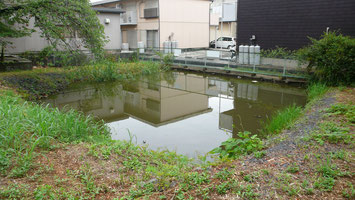 武蔵国一の宮三社・中山神社「御神池」の復興・整備と  定期清掃費協賛(M様と協賛¥1,000,000)