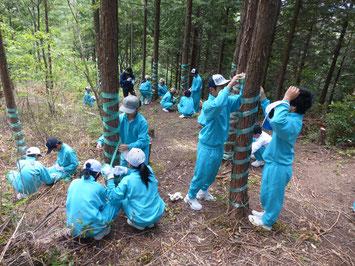 岐阜県の中学生によるしかよけテープまき